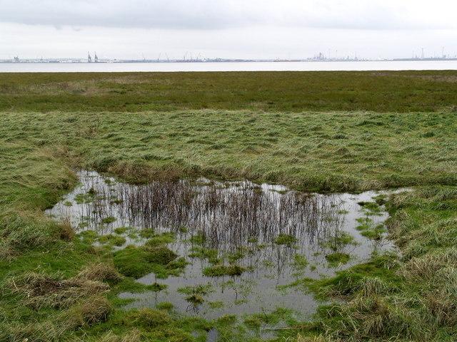 Riverside Pond at Cherry Cobb Sands