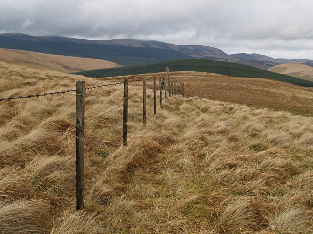 Fence, Whitelaw Brae