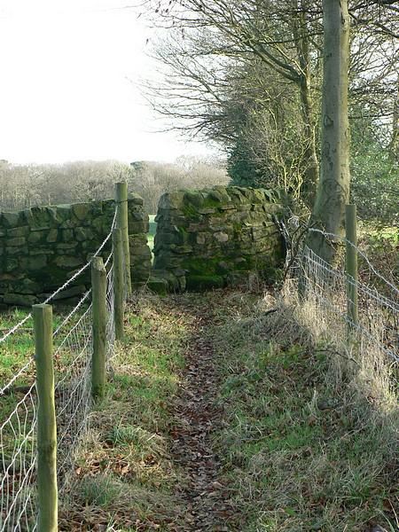 Public footpath by Whetstone Farm