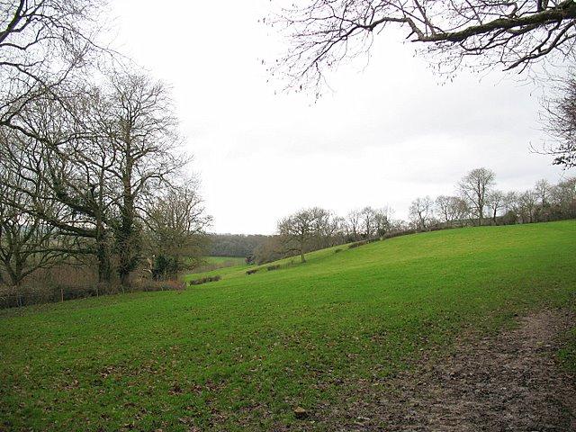 View from Lime Kiln Lane