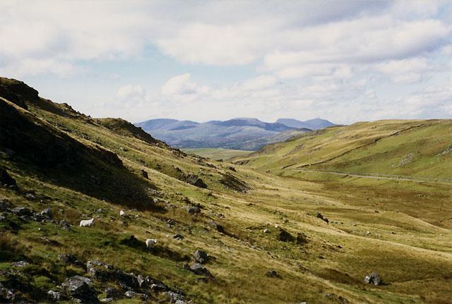 Hillside south of Bwlch Oerddrws