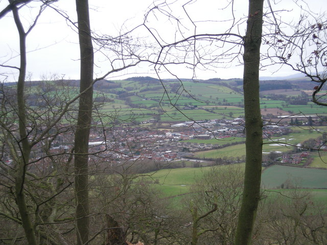 Craven Arms from the woods