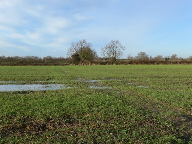Farmland near Sharnford, Leicestershire
