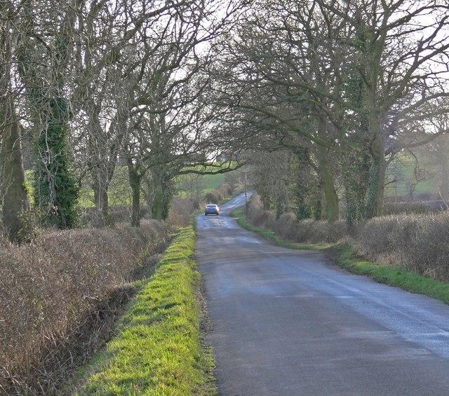 Bumble Bee Lane towards High Cross