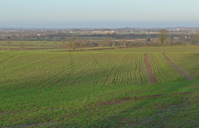 A view north across Leicestershire