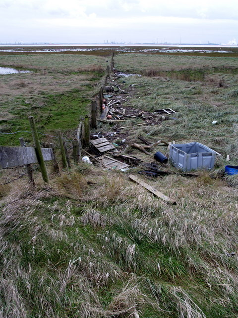 Marshland Fence and Debris