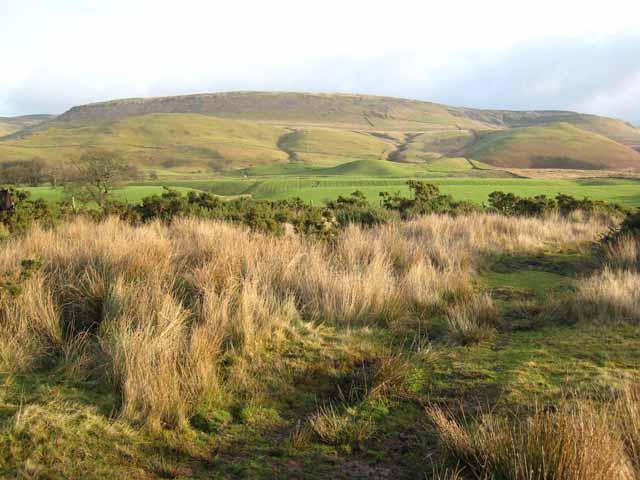 Rough grazing and gorse near Wythwaite