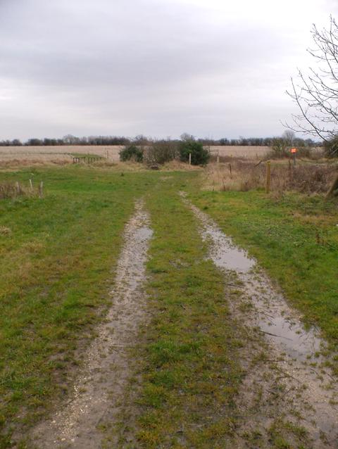Waterlogged Track