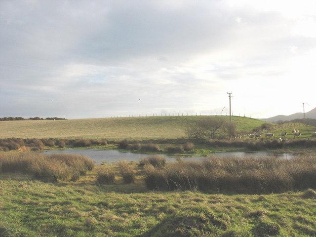 Pond at Porthdinllaen Farm