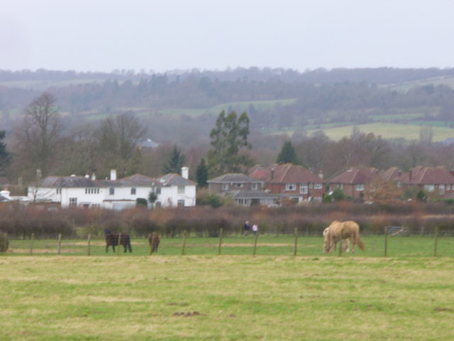 Shalford from the Downslink