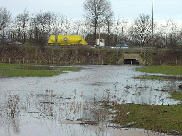 River Dove in flood