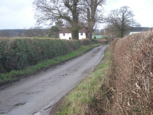 Lane past Rodefern