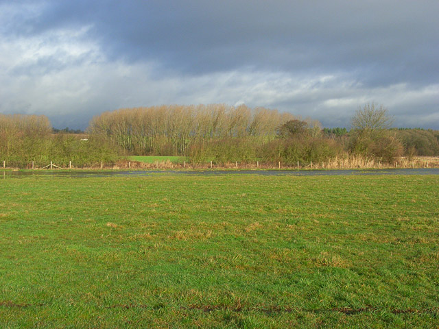The Thames floodplain near Shiplake