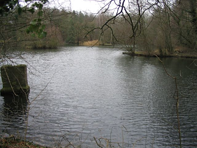 Lake by the Test Way
