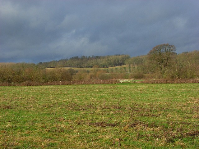 The Thames floodplain near Sonning Eye