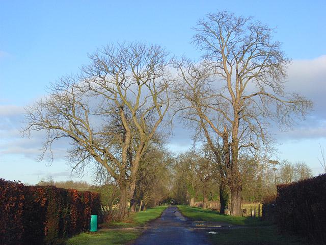 Farm road, Arborfield