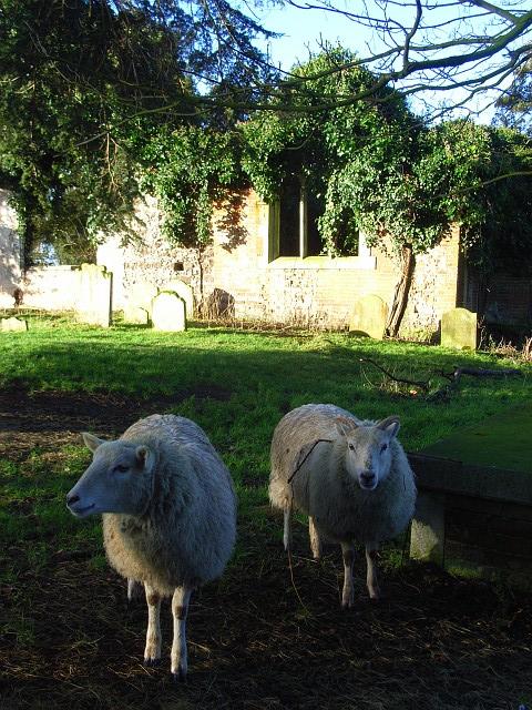 Church ruins, Arborfield