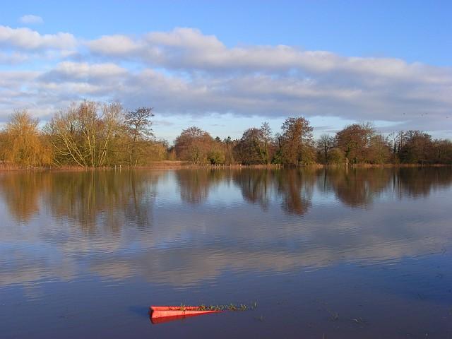 The Loddon floodplain, Arborfield