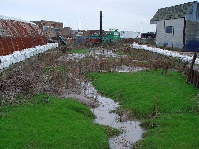 Disused Dock, Hull