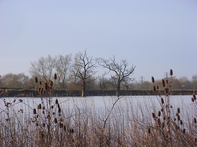 The Loddon floodplain, Shinfield