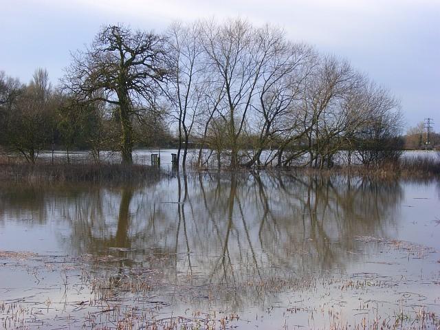 The Loddon floodplain, Shinfield