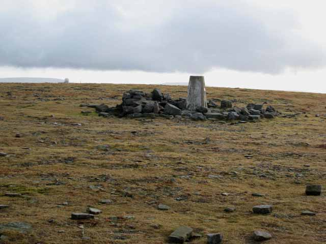 Summit plateau of Cross Fell