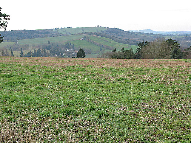 View west across farmland near King's Thorn
