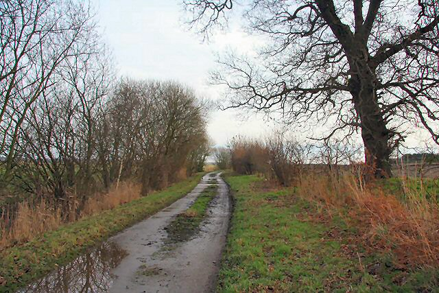Track to Iken Marshes