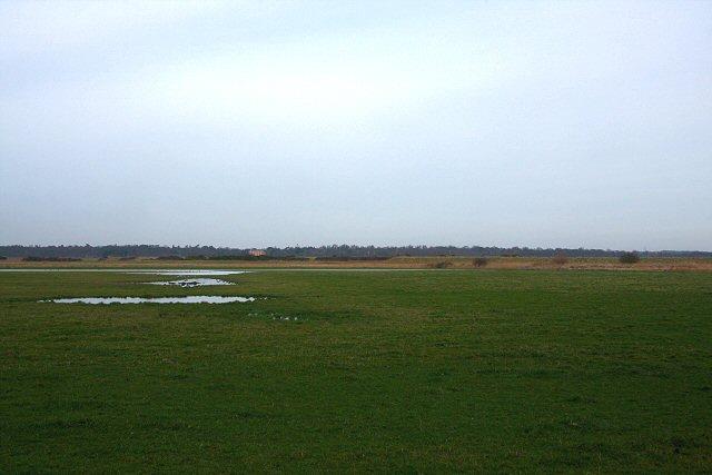 Iken Marshes