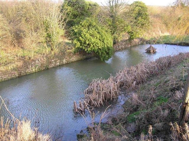 Medieval Pond in Saltford