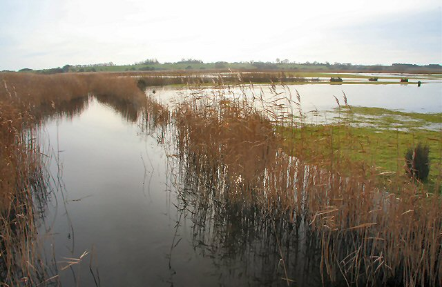 Flooded marshland by the River Alde