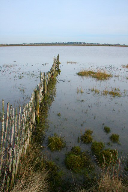 Fence in River Alde