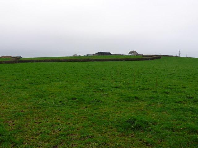 Ryalls farm Near Sturminster Newton