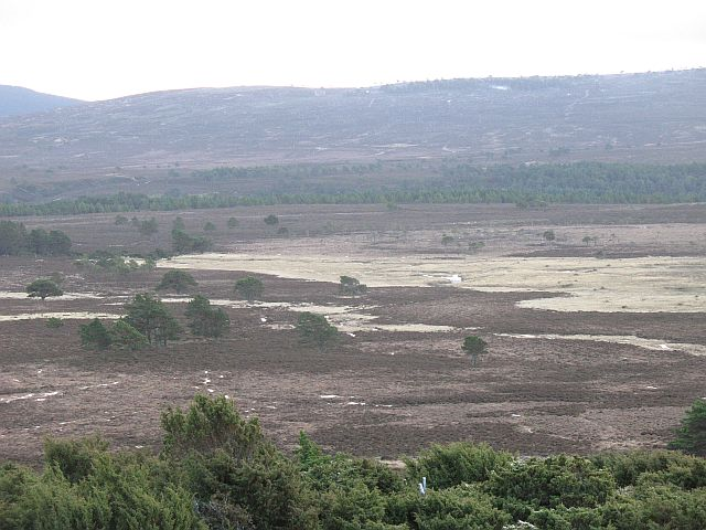 Flat land beside the Dulnain