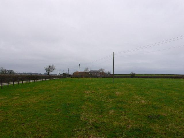 Grove Farm, Stalbridge