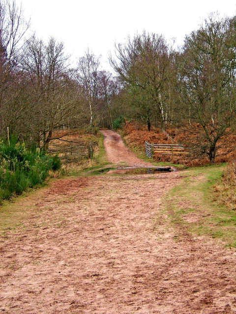 Bridleway through Devils Spittleful Nature Reserve
