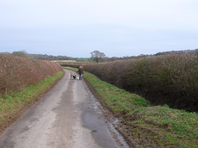 Country lane Walking the dogs, Purse Caundle