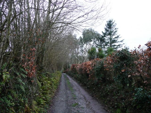 Spycott Lane