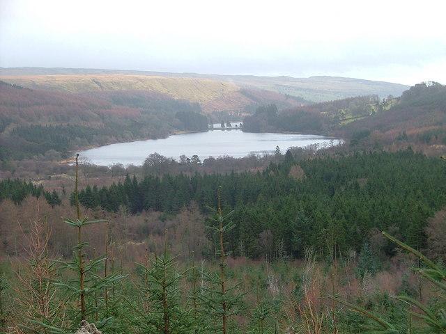 Pentwyn Reservoir from Taf Fechan Forest