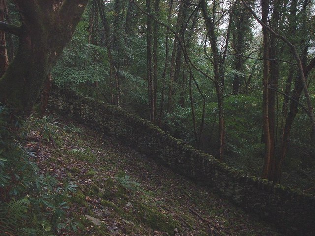 Old Penmaenuchaf Estate Boundary Wall