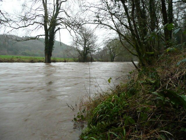 River Taw in flood