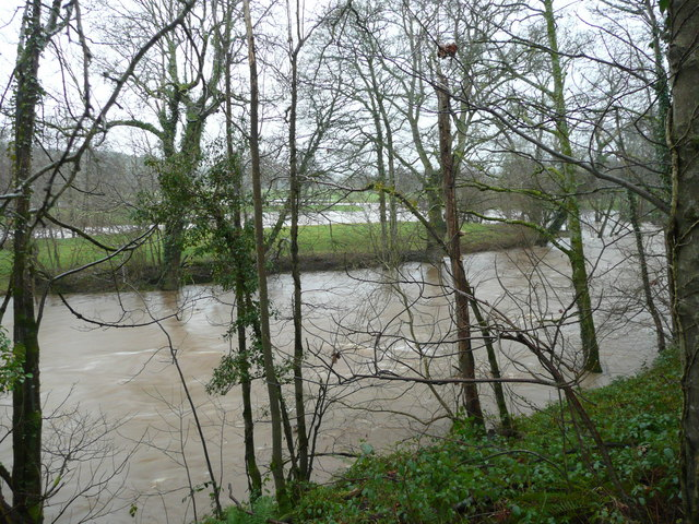 River Taw meanders in flood; 1