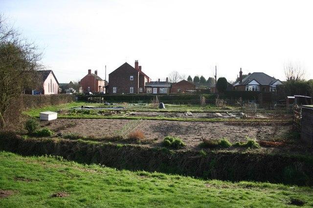 Chapel Lane allotments