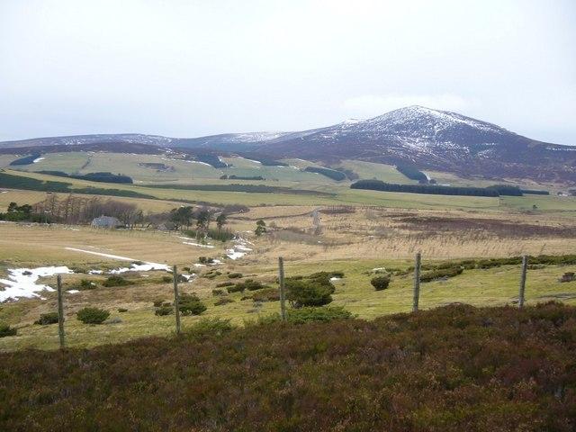 Towards Ben Rinnes from near the Burn of Altavallie