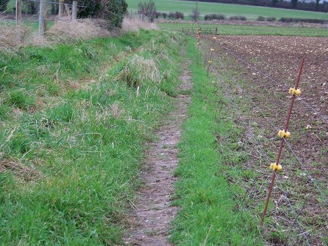 Restricted byway near Odstock