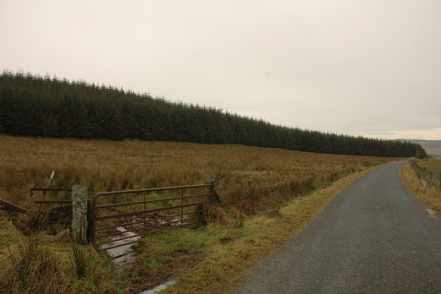 Field and forestry by Hill of Shenwall