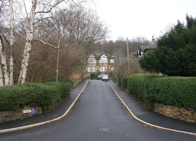 The Rise - Morris Lane
