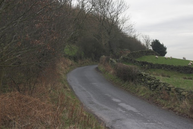 The road in Farndale near Underhill Farm