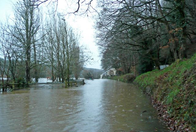 Flooded Torridge at Weare Giffard