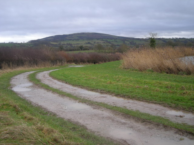 Track beside angling lake